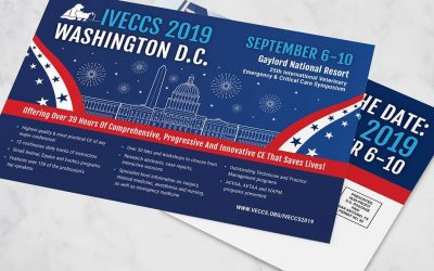 IVECCS 2019 Symposium Postcard Design
